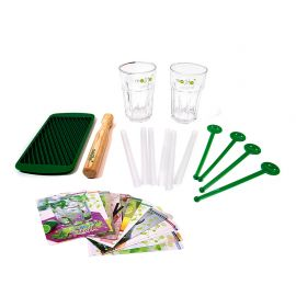 Kit complet pour Mojito