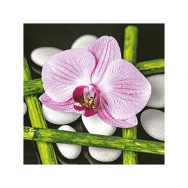 Lot de 20 serviettes papier ORCHIDEE 25x25cm