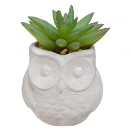Plante artificielle cactus pot hibou ciment D 6x8cm