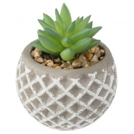 Plante grasse artificielle pot en ciment H 9cm